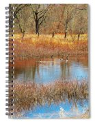 Wild Geese On The Farm Spiral Notebook
