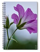 Wild Geraniums Spiral Notebook