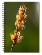 Wild Grass 2 Spiral Notebook