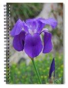 Wild Growing Iris Croatia Spiral Notebook