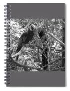 Wild Hawaiian Parrot Black And White Spiral Notebook
