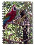 Wild Hawaiian Parrot  Spiral Notebook