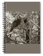 Wild Hawaiian Parrot Sepia Spiral Notebook
