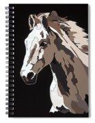 Wild Horse With Hidden Pictures Spiral Notebook