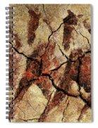 Wild Horses - Cave Art Spiral Notebook