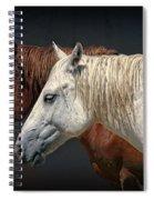 Wild Horses Spiral Notebook