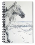 Wild Horses Drawing Spiral Notebook