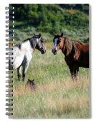 Wild Horses In Medora Spiral Notebook