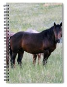 Wild Horses In The Badlands Spiral Notebook