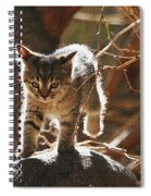 Wild Kitten Happy To Be Alive Spiral Notebook