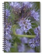 Wild Lavender Spiral Notebook