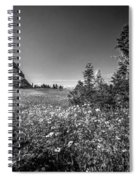 Wild Mountain Flowers Glacier National Park Spiral Notebook