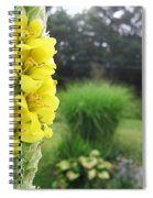 Wild Mullein Spiral Notebook