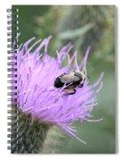 Wild Nectar Spiral Notebook
