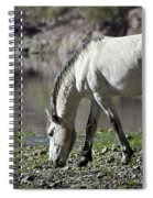 Wild On The River  Spiral Notebook