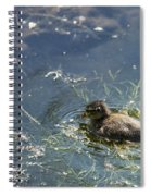 Wild One Spiral Notebook