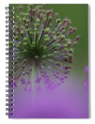 Wild Onion Spiral Notebook
