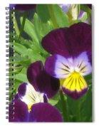 Wild Pansies Or Johnny Jump-ups 1 Spiral Notebook