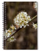 Wild Pear Spiral Notebook
