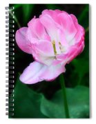 Wild Pink Rose Spiral Notebook