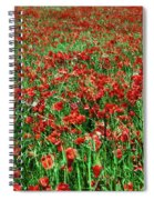 Wild Poppies Growing In A Field, South Spiral Notebook