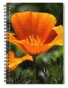 Wild Poppy On The Loose Spiral Notebook
