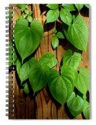 Wild Potato Vine 2 Spiral Notebook