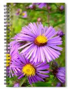 Wild Purple Asters Spiral Notebook