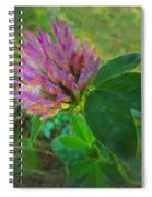 Wild Red Clover Blossom Spiral Notebook