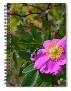 Wild Rose 3 Spiral Notebook