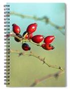 Wild Rose Hips Spiral Notebook