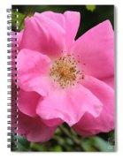 Wild Rose Square Spiral Notebook