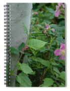 Wild Roses With Birch Tree Spiral Notebook