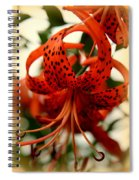 Wild Smokies Lily Spiral Notebook