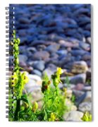 Wild Snapdragons  Spiral Notebook