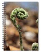 Wild Spring Fern Spiral Notebook