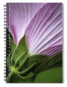 Wild Swamp Rose Mallow Spiral Notebook