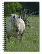 Wild Thing... Spiral Notebook