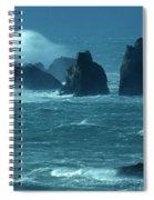 Wild Waters 2 Spiral Notebook
