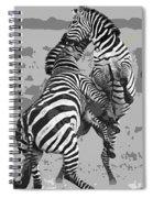 Wild Zebras Spiral Notebook