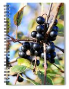 Wildberry Plant Spiral Notebook