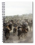 Wildebeest Migration  Spiral Notebook