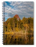 Wilderness Pond 2 Spiral Notebook