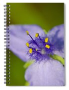 Wildflower 1 - Botanical Photography By Sharon Cummings Spiral Notebook