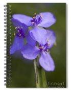 Wildflower Blues Spiral Notebook
