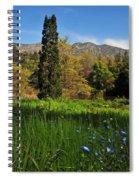 Wildflower Meadow At Descanso Gardens Spiral Notebook