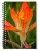 Wildflower Smiley Face Spiral Notebook