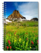 Wildflowers At Logan Pass Spiral Notebook