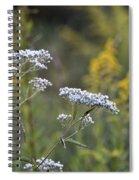 Wildflowers In September 2012 Spiral Notebook