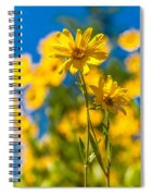 Wildflowers Standing Out Spiral Notebook